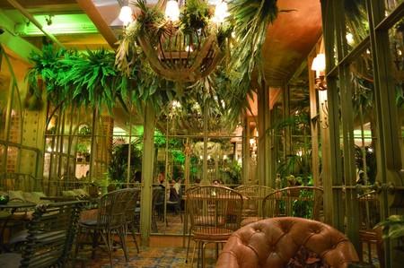 El Invernadero de Salvador Bachiller, un espacio mágico en plena Gran Vía
