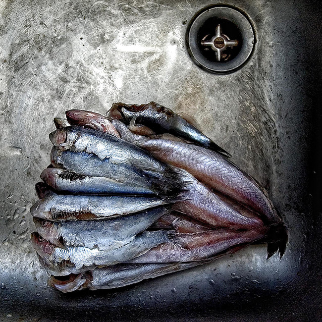 Adolfo Enríquez - FISH. Premios LUX 2016. Categoría Bodegón