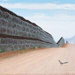 Este correcaminos frenado en seco por el muro fronterizo de los EE.UU es la foto ganadora del Bird Photographer of the Year 2021