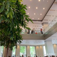 Foto 15 de 28 de la galería apple-store-passeig-de-gracia-1 en Applesfera