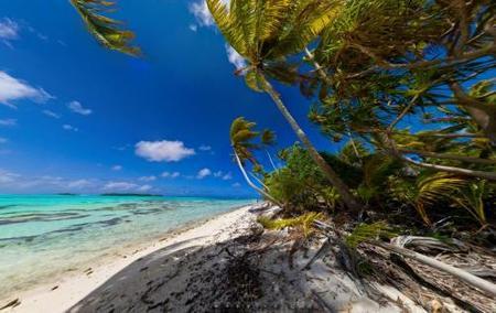 La isla privada de Marlon Brando