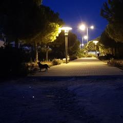Foto 2 de 4 de la galería iluminacion-complicada en Xataka