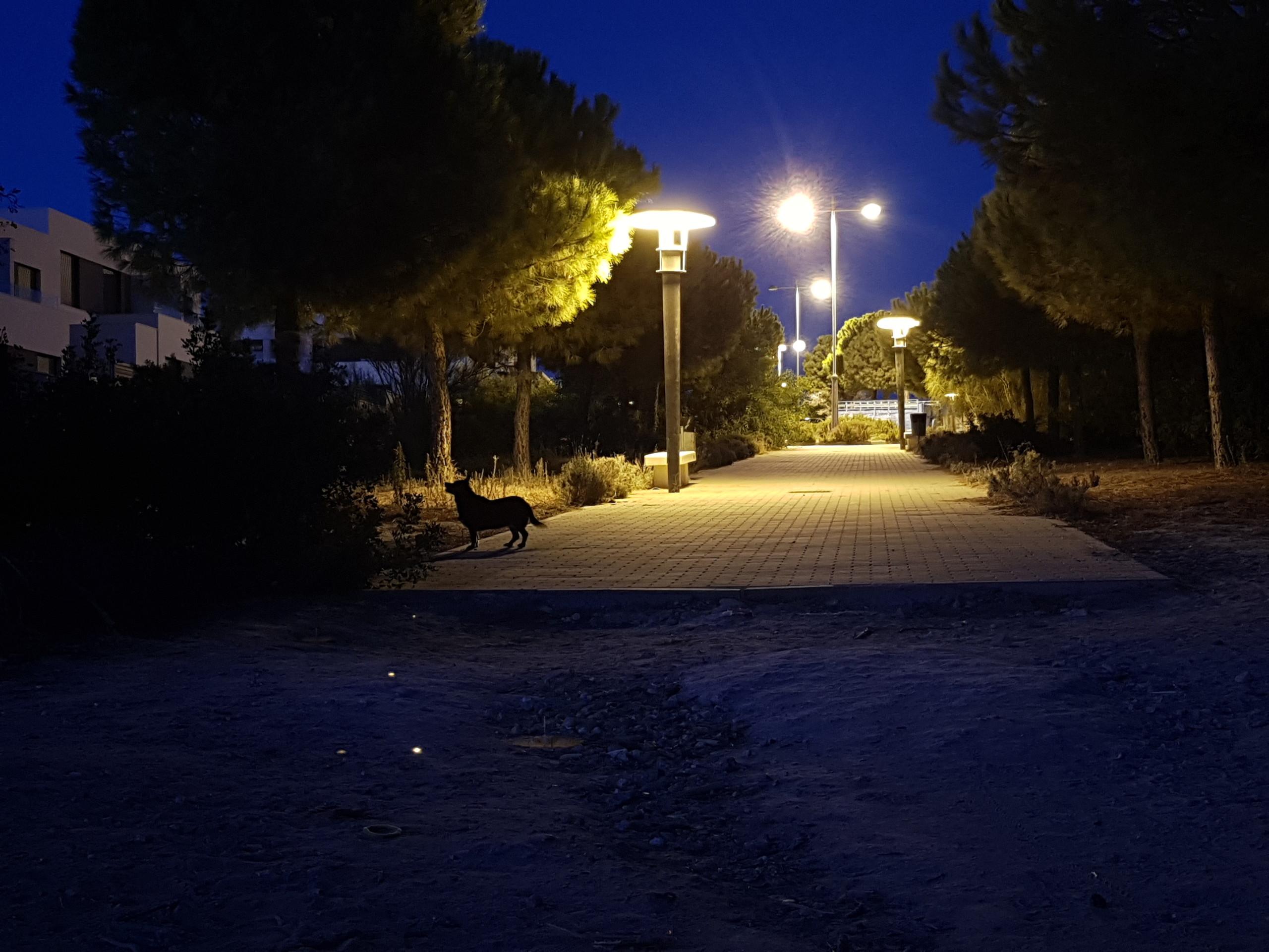 Foto de iluminación complicada (2/4)