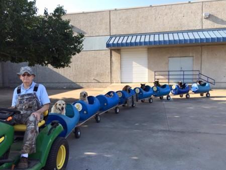 Este hombre pasa su jubilación alimentando y paseando en tren a perros abandonados