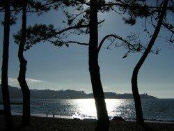 Talasoterapia, propiedades curativas del agua de mar.