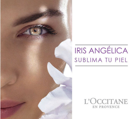 L'Occitane lanza una rutina BB Cream: Iris Angelica, el dúo serum + BB cream