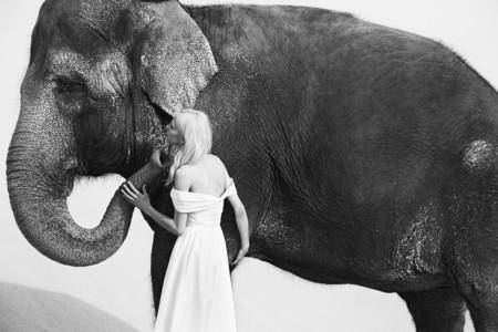 Williams Hirakawa Fotogafia De Moda Fotografos 7