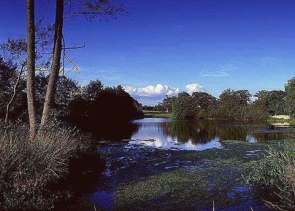 Foto de Four Seasons en Hampshire (16/31)