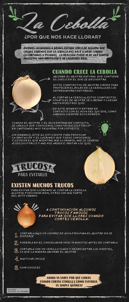 Cebolla Infografia