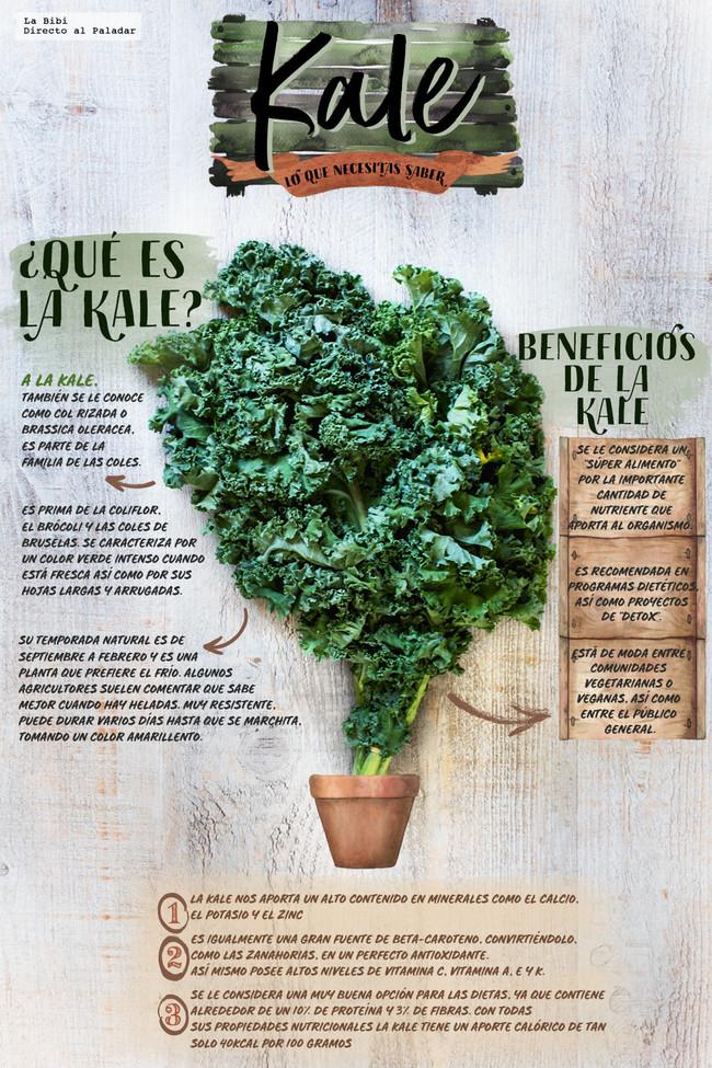 Kale Infografia