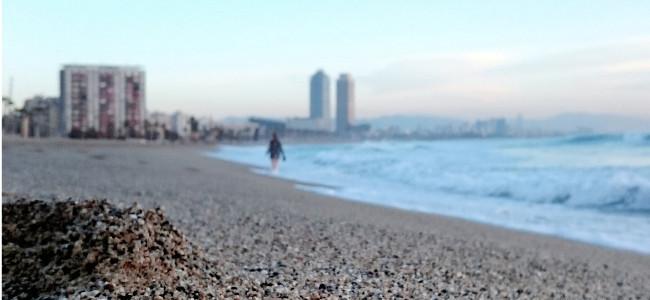 Foto de Xperia Z5 (11/26)
