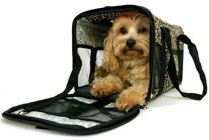 Salvaje bolso de transporte para mascotas