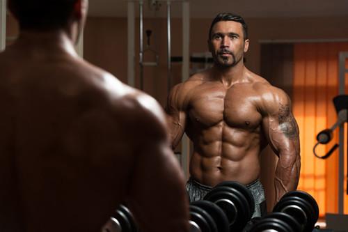 ¿Pueden las proteínas aumentar la masa muscular en ausencia de ejercicio?