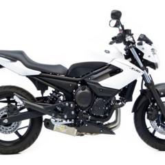 Foto 11 de 11 de la galería leovince-gp-pro-evo-ii-y-leovince-underbody-evo-ii-para-yamaha-xj6-i-e-2013 en Motorpasion Moto