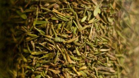 Tomillo seco: una especia concentrada en minerales