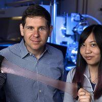Un material que puede regular su propia temperatura ha sido inspirado por la piel del calamar