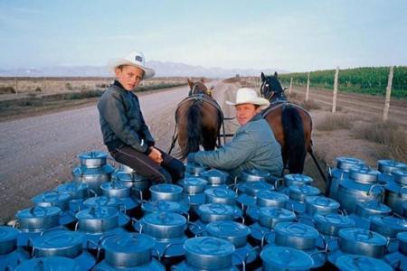 desierto-de-chihuahua-mexico-2121.jpg