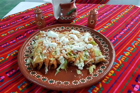 Enjitomatadas gratinadas con pollo. Receta fácil de la cocina mexicana