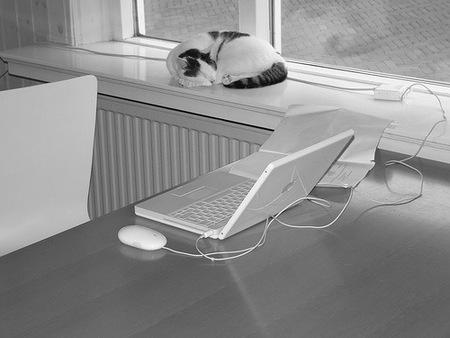 Webmaster y bloggers: empresarios en internet (II)