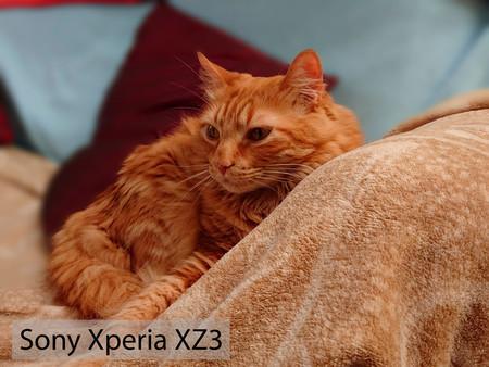 Sony Xperia Xz3 Retrato 01