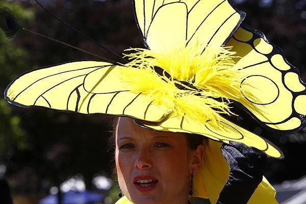 Foto de Ascot 2008: imágenes de sombreros, tocados y pamelas (11/20)