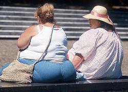 La obesidad, ¿enfermedad contagiosa?