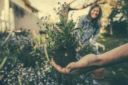 Nueve compras para montar un invernadero o tu propio huerto en la terraza de casa (aunque tengas poco espacio)
