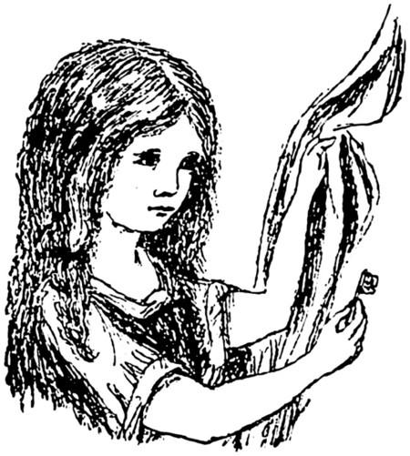 Alicia 2
