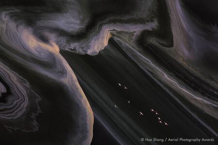 Flying Flamingos Hua Shang Aerial Photography Awards