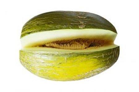 Respuesta a la adivinanza. El melón es la fruta de verano más recomendable en la dieta deportiva