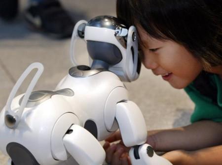 Las grandes ciudades ya no tienen espacio para las mascotas, ¿los robots son la solución?