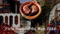 Feria Nacional del Mole 2014, preservando una de nuestras más antiguas tradiciones