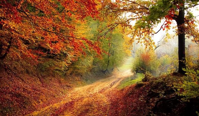 Compañeros de Ruta: encarando el otoño