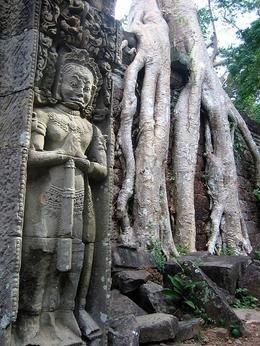 El templo de Angkor Wat en Camboya: Asia Project (III)