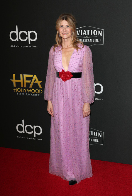 Laura Dern hollywood film awards 2019