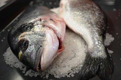 El pescado en la alimentación infantil: pescados semigrasos