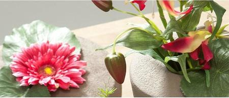 Verdecorar Flores