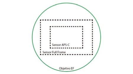 Tipo de sensor
