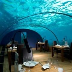 Foto 8 de 9 de la galería maldivas-hilton-resort en Trendencias