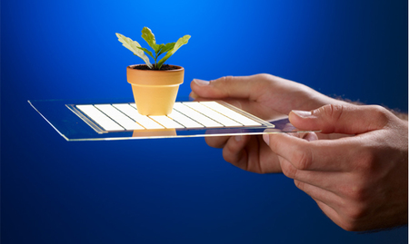 Apple contrata a un experto en pantallas OLED, ¿su próxima tecnología a utilizar?