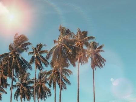 Aquí huele a vacaciones y nuestra mente tan solo tararea música buenrollera
