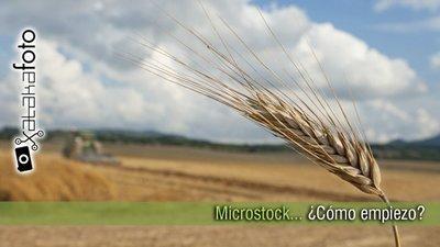 Microstock... ¿Cómo empiezo? (II)