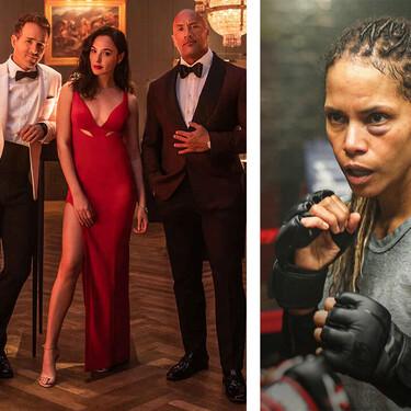 'Alerta Roja' con Gal Gadot, la vuelta de 'Tiger King' o 'Herida' con Halle Berry: todos los estrenos de Netflix en noviembre