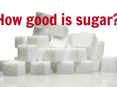 ¿Por qué la independencia del CSIC es tan importante para que comamos sano y bien?