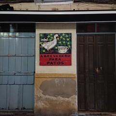 Foto 21 de 31 de la galería xperia-xz-premium-galeria en Xataka