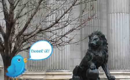 Del Congreso y de Twitter, una nueva especie: el diputuitero