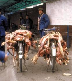 China cambia su dieta: más carne y menos agua
