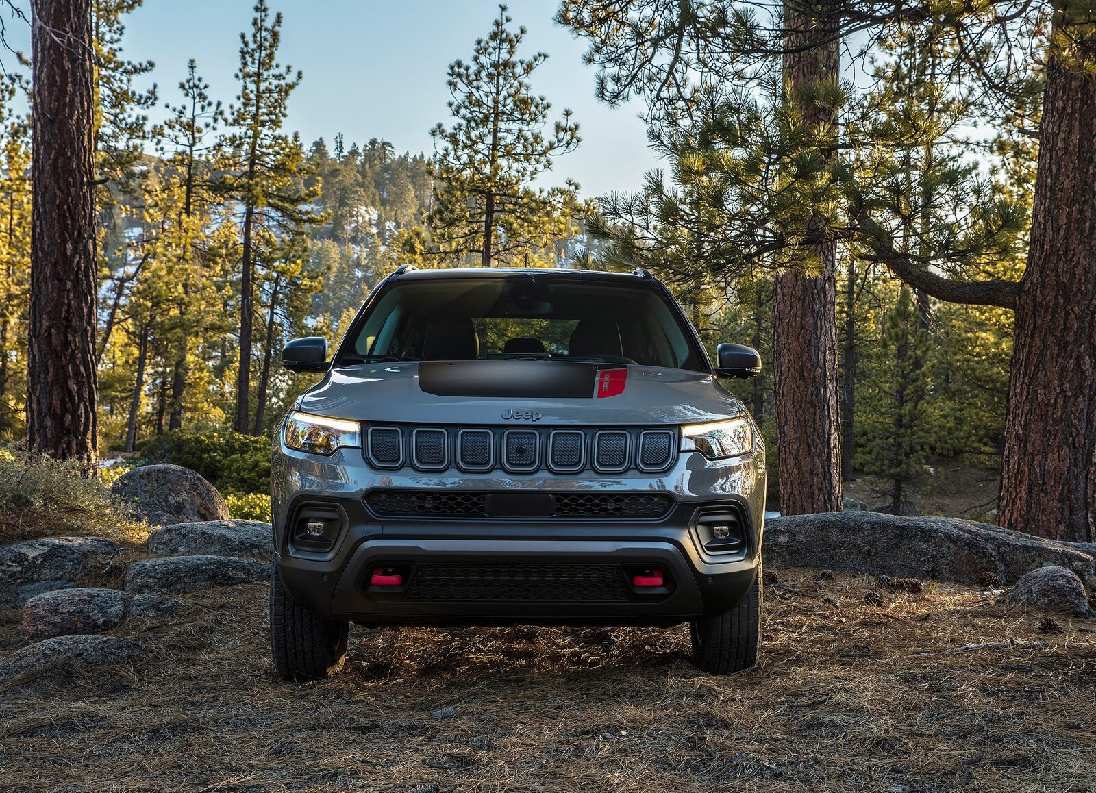 Foto de Jeep Compass 2022 (10/20)