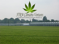 ¿Marihuana para producir biodiésel? En California es posible