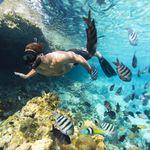Las Bahamas se convierte en el primer país que prohibe los plásticos